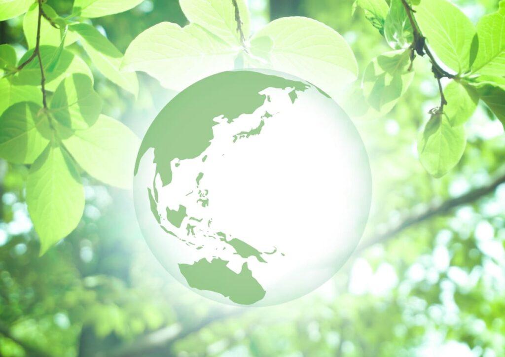 グリーンライフポイント制度とは?対象やメリット・利用方法を徹底解説